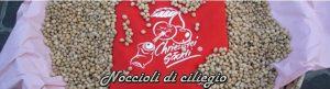 italienische_vertretung