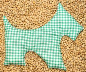 20704-hund-mit-kirschkernen